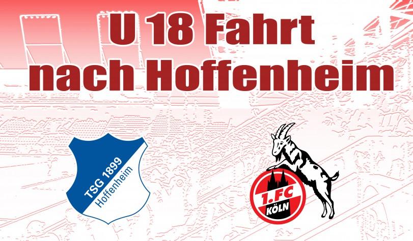 Hoffenheim_16