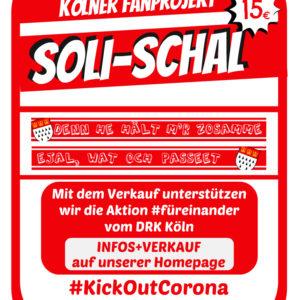 Fanprojekt Soli-Seidenschal